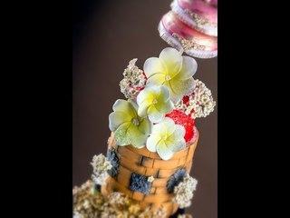Behind The Scenes - Amazing Cakes Photoshoot