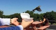 Il libère un oiseau après l'avoir sauvé ....