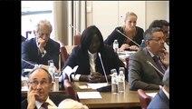 Seybah Dagoma - Audition de Laurent Fabius, ministre des Affaires étrangères et du Développement international - 15 septembre 2015