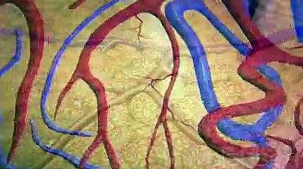 Les traitements de la thyroïde