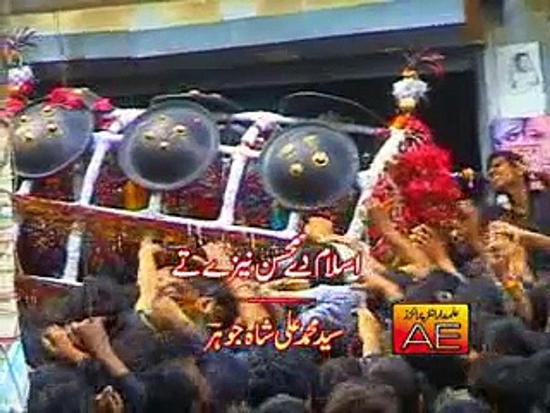 Islam De Mohsin Naize Te Video Noha by Zakir Hussain Zakir Nohay 2010