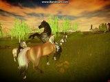 Wild Wild Horse