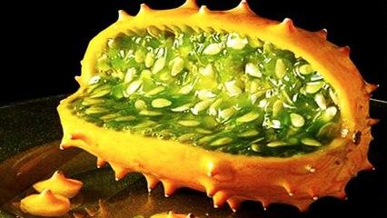 World's 10 Deadliest Foods