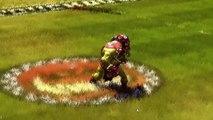 Blood Bowl II - Orques vs. Haut-Elfes