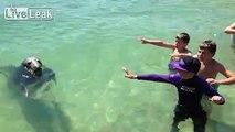 Nice Friend in the Ocean