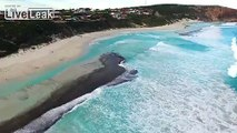 LiveLeak.com - Surfers!  Dolphins jumping the waves..