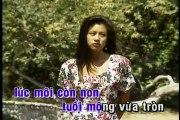 Buồn trong kỷ niệm - Che Linh - Karaoke beat chuẩn