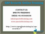 sap security online training in uk| sap security training