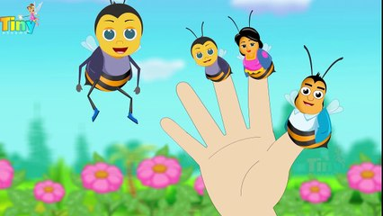 Bee Finger Family | Nursery Rhymes for Kids | HD