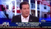'I Don't Understand Why You're Being So Rude!: Meghan McCain, Bolling Get Heated Over Jeb