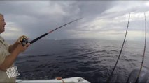 Mako Shark Breaches | Fish Out Of Water