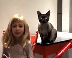 Böyle Kediyi İlk Defa Göreceksiniz!