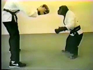 Un singe fait du kung-fu et il est fort