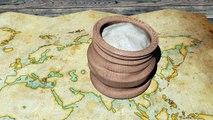 Le riz, de la rizière à l'assiette