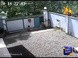 Gate crashes on two kids