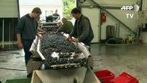 Les vins d'Henri Jayer atteignent les sommets