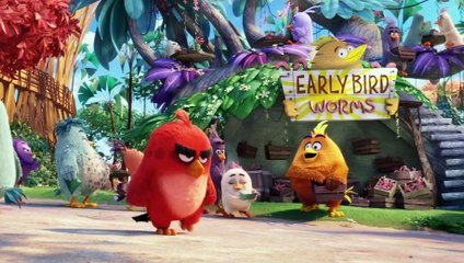 ANGRY BIRDS Le Film Bande Annonce VF (2016)