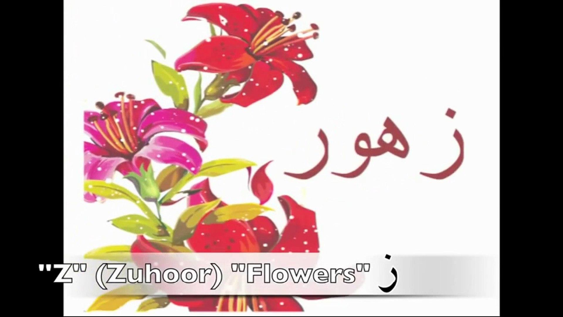 Learn Arabic Alphabet | تعلم الأبجدية العربية