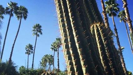 3 jours au Royal Palm de Marrakech