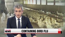 Gov't on high alert for avian influenza during Chuseok