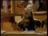 """Pub Milka  Marmotte """"mais bien sur"""""""