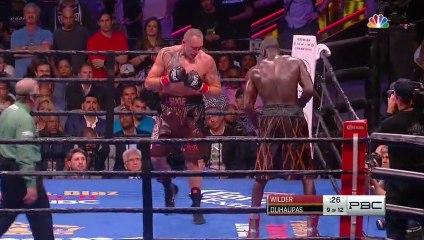 Deontay Wilder vs Johann Duhaupas  Full Fight
