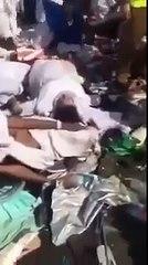 Shocking Video of Mina Stampede 220 dead 500 hurt in Hajj stamped [initial estimate]