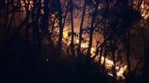 L'Australie toujours en proie aux flammes