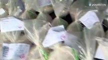 8 tonnes de drogues détruites au Pérou
