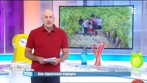 Matinales France 3 du mardi 29 septembre 2015