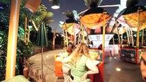 [Extreme Low Light] Flik's Flyers - California Adventure (Anaheim, California)