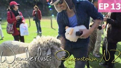 Daven's Sheep Adventures in Queenstown | Wanderlust: New Zealand [EP 13]