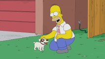 THE SIMPSONS | Puppy Love from Peeping Mom | ANIMATION on FOX
