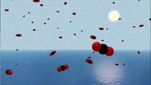 A acidificação dos oceanos