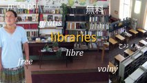 Libraries, Telecentres, Cybercafes and Public Access to Information and Communication Technologies