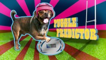 Wales v Fiji - Rugby World Cup Puggle Predictor