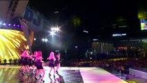 DJ Concert SNSD - Lion Heart & Talk