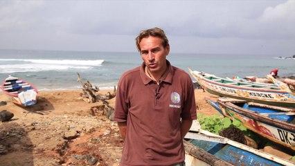 « Environnement et développement durable au Sénégal : la parole aux acteurs du volontariat »