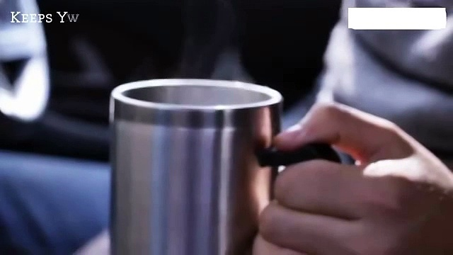 Stainless Steel  Travelling Mug with Car Adopter