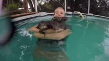 Luckiest Girl has massive hug with Baby Otters in pool