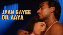 Jaan Gayee Dil Aaya - Udit Narayan & Alka Yagnik Romantic Duet - Anand Milind Songs