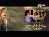 Ye Mera Deewanapan Hai Episode 15 on Aplus - 3 Oct 2015 - Video Dailymotion
