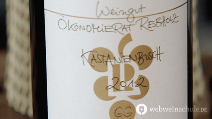 Weinschule Folge 35: Was ist Terroir?