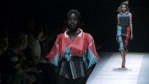 Issey Miyake Spring Summer 2016 | Paris Fashion show | C Fashion
