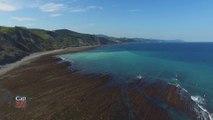 Cap Sud Ouest Pays Basque Espagne/Geoparkea (Zumaia, Deba, Mutriku)