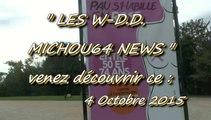 LES W-D.D. MICHOU NEWS - PAU - 4 OCTOBRE 2015 - LE GAZON DU BOULEVARD ET LES DÉCORATIONS EN CENTRE VILLE POUR OCTOBRE ROSE.