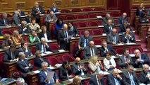 QAG Sénat - Réponse d'H. Désir à A. Gattolin sur le statut de la Chine à l'OMC et position européenne