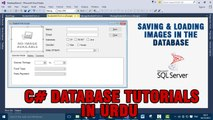 P(15) C# Database Tutorials In Urdu - Saving And Loading Images in the database