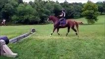 Un cheval très très prudent...