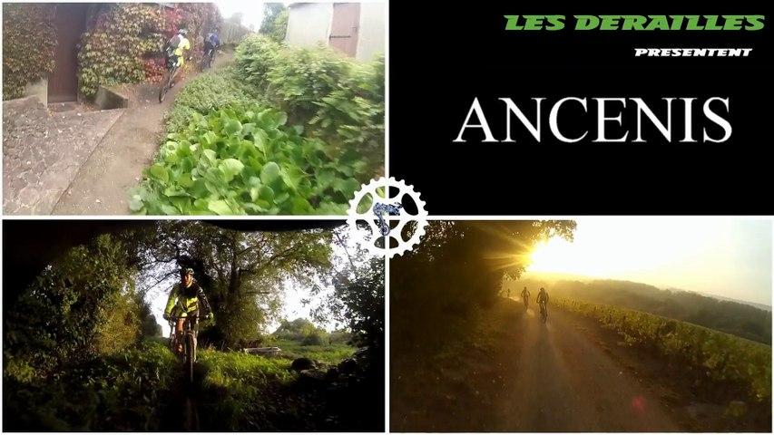 ANCENIS - 2015